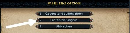 Packochsenbeutel option.jpg